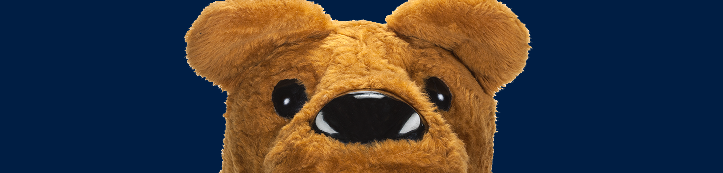 Nittany Lion Mascot Head on a blue background.
