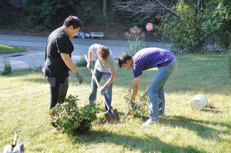 Students digging in campus garden